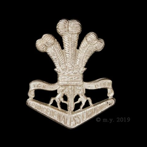 4th/19th Prince of Wales's Light Horse Cap Badge