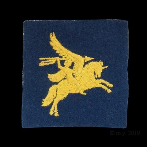 6th Field Force Airborne Formation Sign
