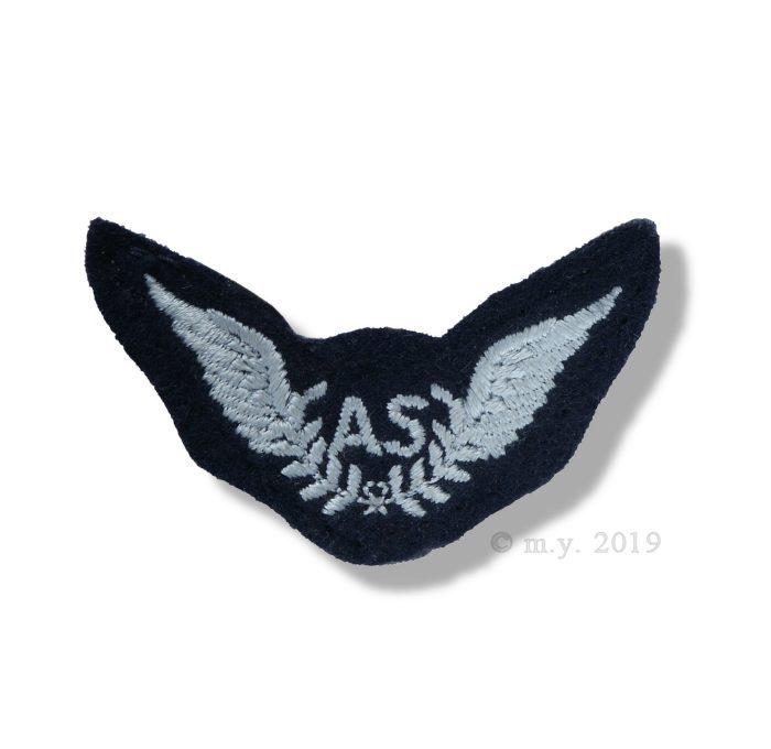 RAF Air Steward Arm Badge