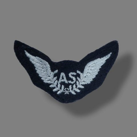 RAF Air Steward Arm Badge