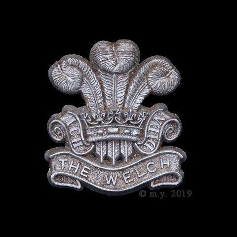 WW2 Welch Regiment Plastic Economy Cap Badge