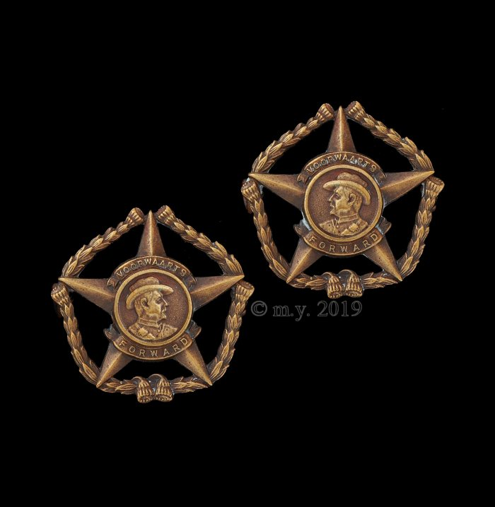 Regiment Botha Collar Badges