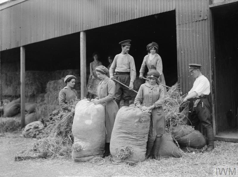 Women of the Forage Corps (ASC) bagging straw. Avington Camp, near Winchester, September 1917.