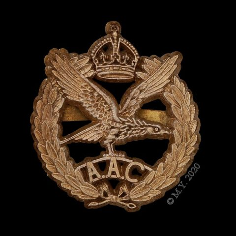 Army Air Corps Plastic Economy Cap Badge c1944