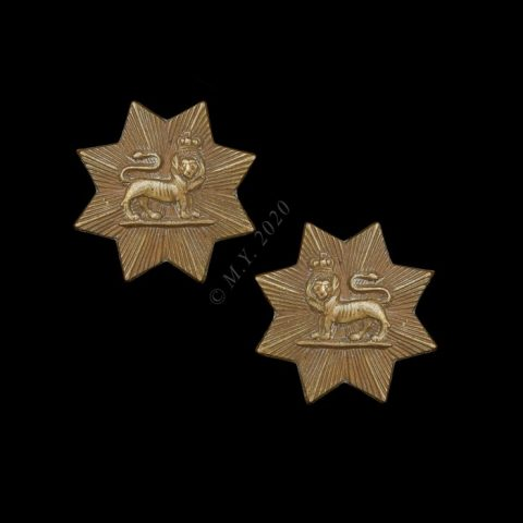The Worcestershire Regiment Collar Badges (1st type 1882-3)