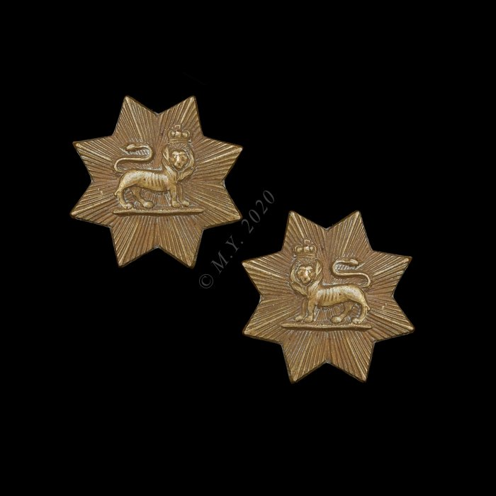 The Worcestershire Regiment Collar Badges